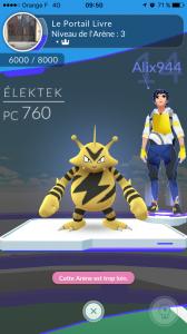 Il faut battre les trois dresseurs d'une arène avec un seul Pokémon